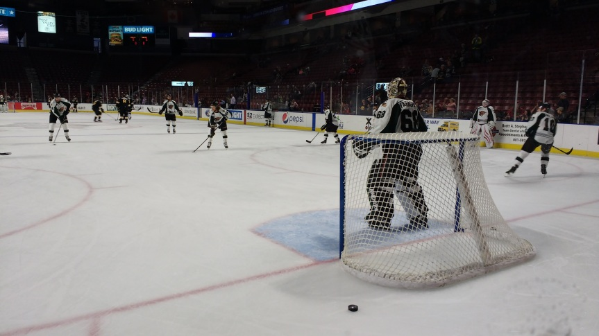 Utah Grizzlies: Third Period Woes