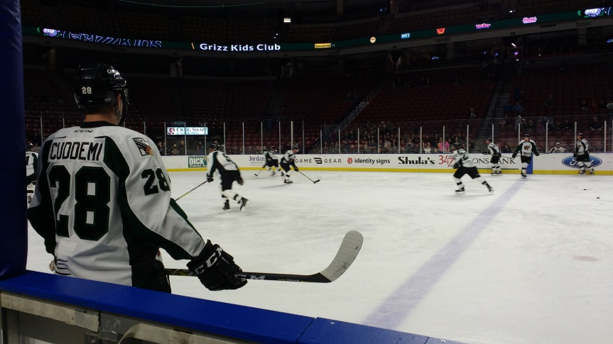 Utah Grizzlies: Into the Storm