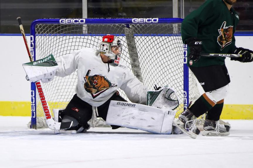 Utah Grizzlies: The Goals Return, but the Losses Continue