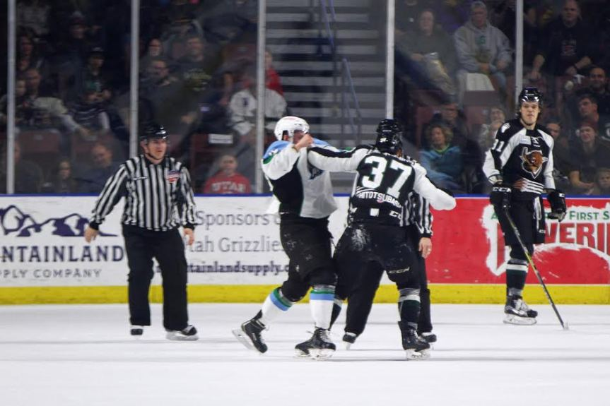 Utah Grizzlies: Total Domination