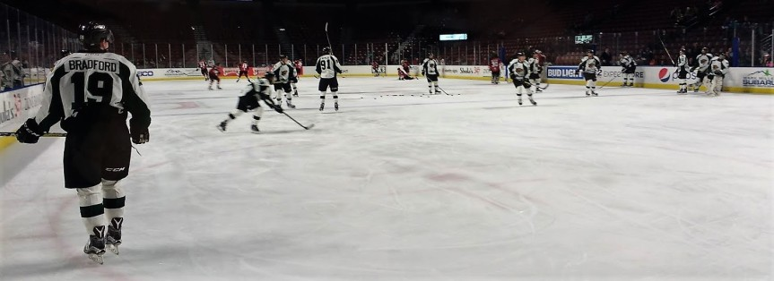 Utah Grizzlies: A Point Taken
