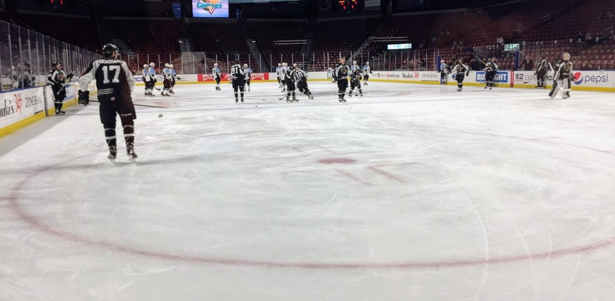 Utah Grizzlies: A Disappointing Outcome