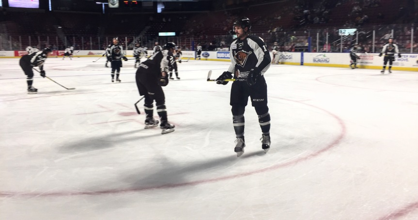 Utah Grizzlies: A Little Help From Our Friends
