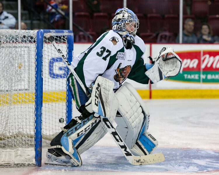 Utah Grizzlies: The Drought Continues