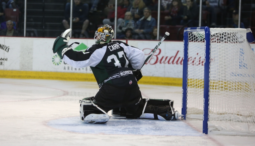 Utah Grizzlies: Back to SquareOne