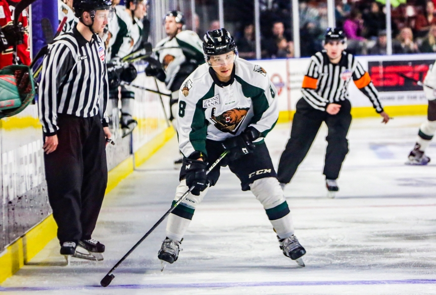 Utah Grizzlies: Far From Ideal