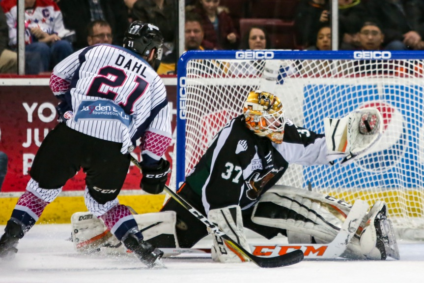 Utah Grizzlies: Costly Lapses