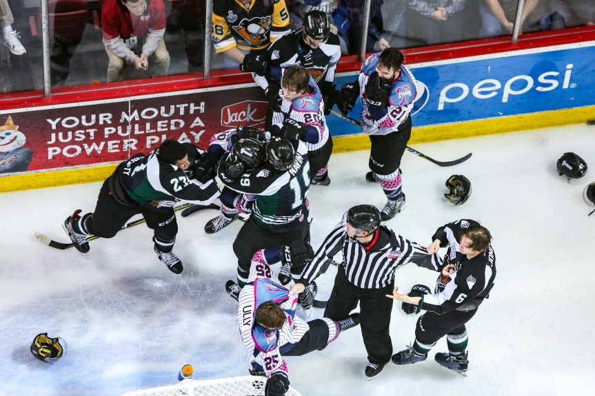 Utah Grizzlies: Saturday Night's Alright