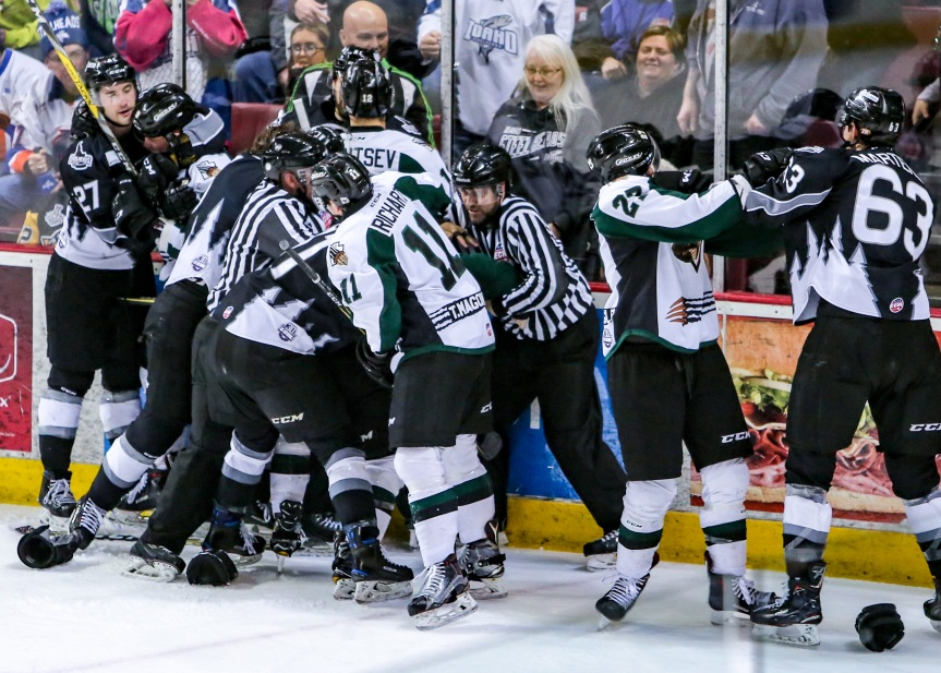 Utah Grizzlies: Do Not Go Gentle