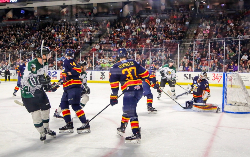 Utah Grizzlies: For Auld Lang Syne