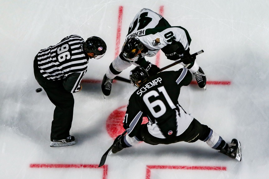 Utah Grizzlies: Holding On