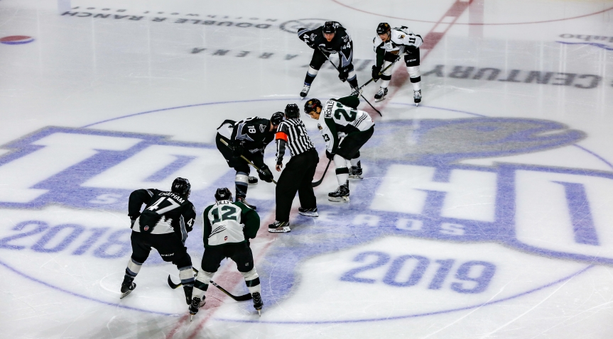 Utah Grizzlies: A Wild One