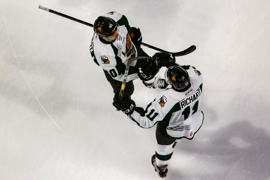 Utah Grizzlies: Winning in Wichita