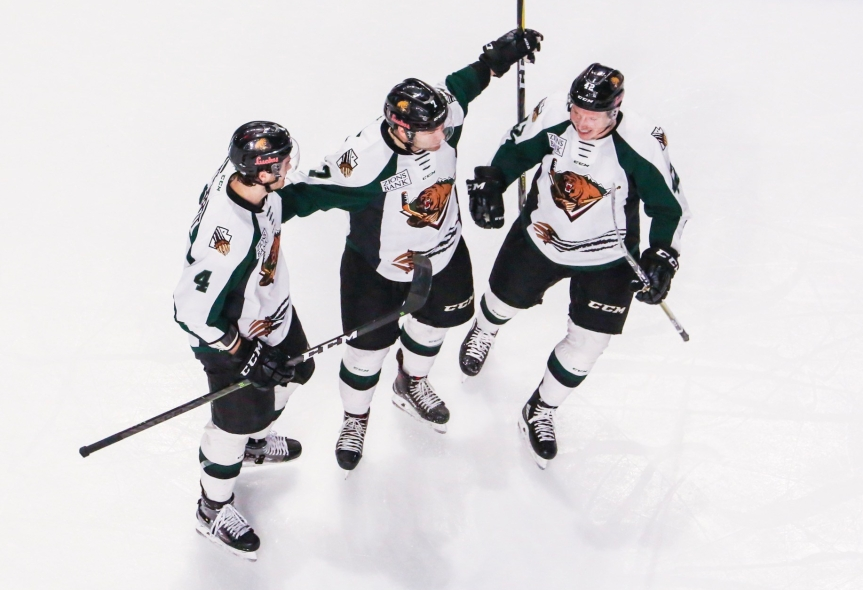 Utah Grizzlies vs Idaho Steelheads: Fending Off the Steel
