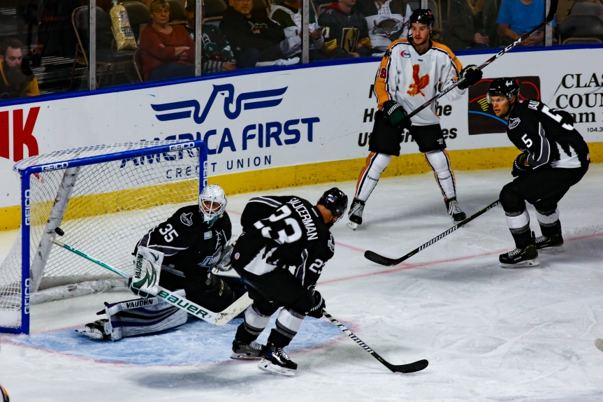 Utah Grizzlies: Slow Start
