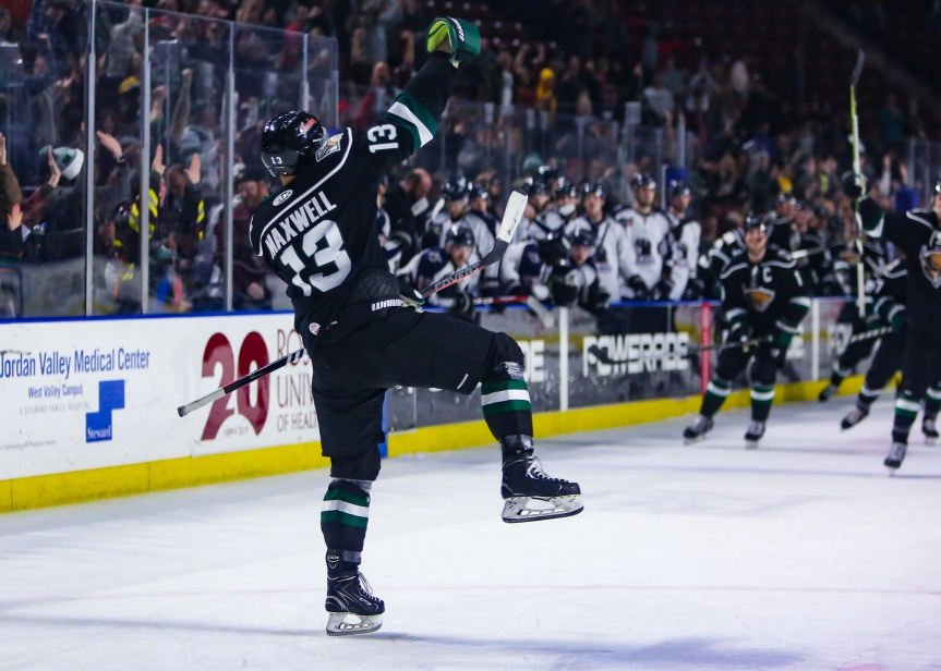 Utah Grizzlies: Is this thing on?
