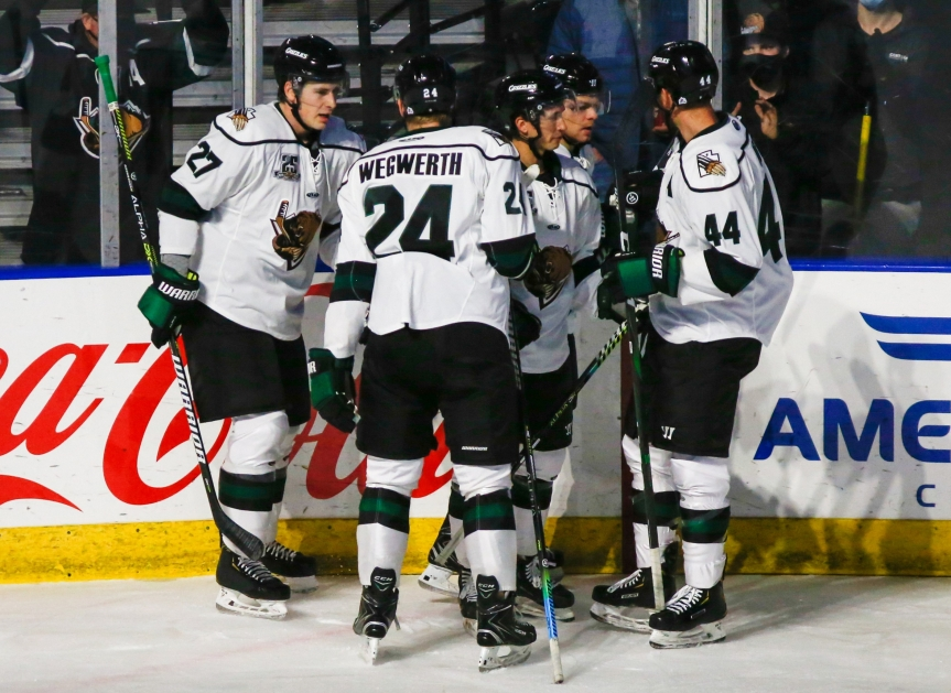 Utah Grizzlies: A Stylish Send-off