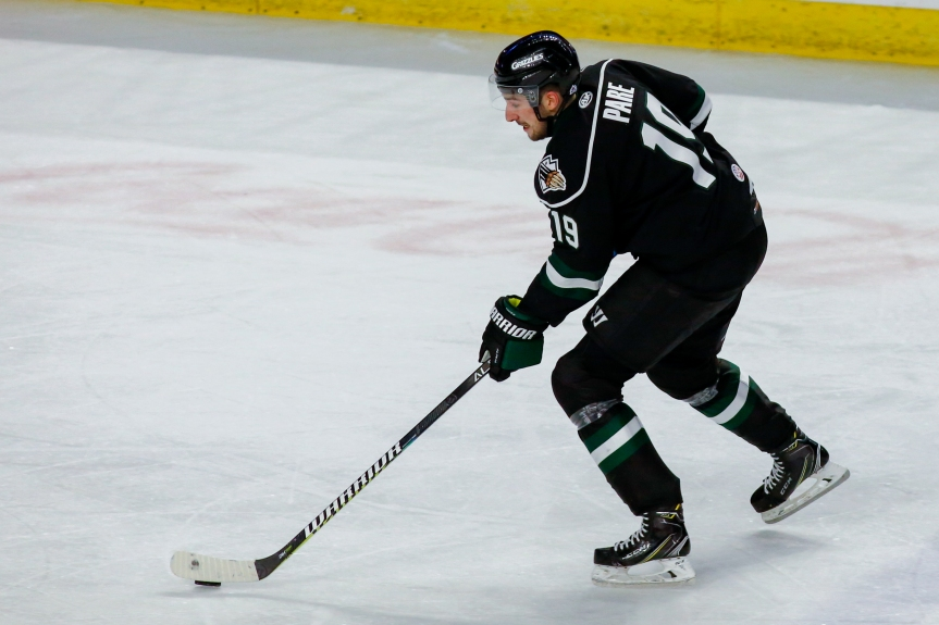 Utah Grizzlies: New Faces