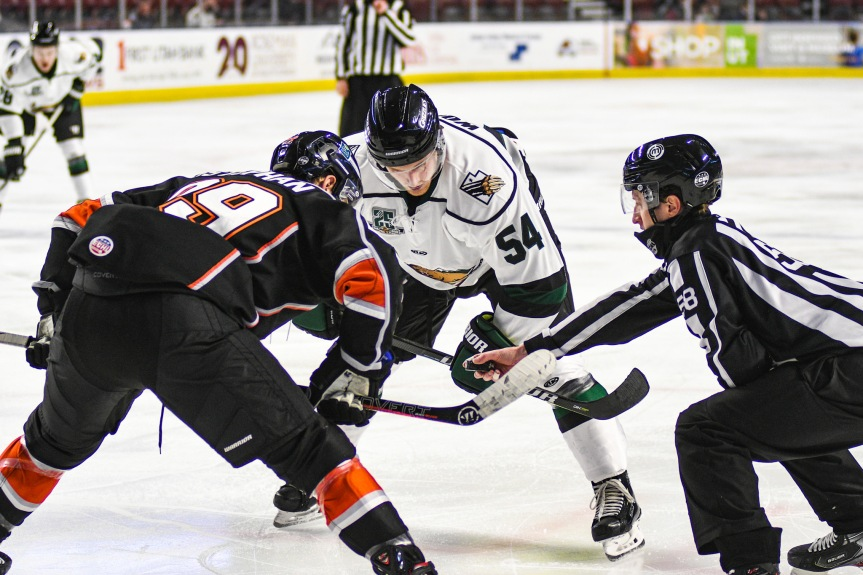 Utah Grizzlies: Too Much to Overcome
